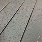 Grey Sparkle Chrome 5mm Wall Panel