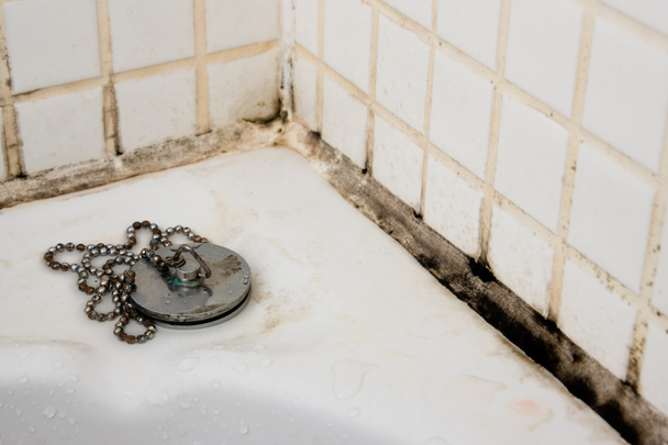 Mouldy grouting