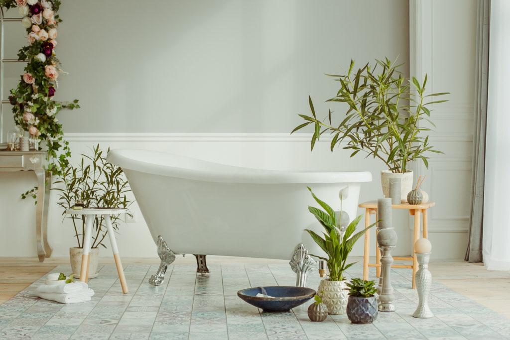 9 Best Bathroom Plants That Love Humidity Dbs Bathrooms